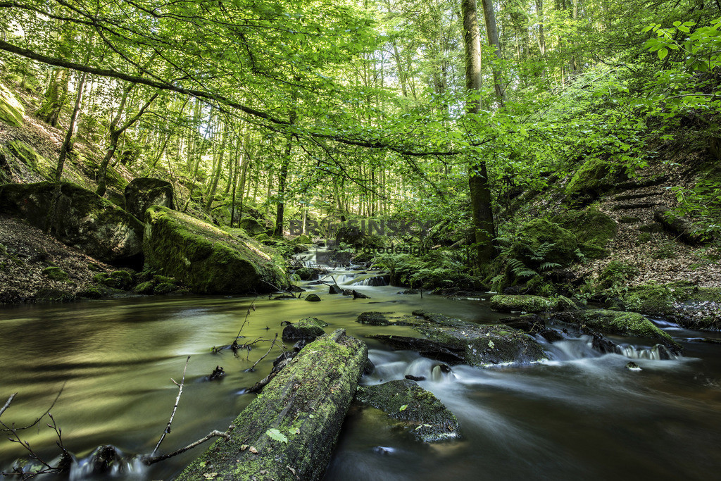 In the Karlstal | Format 2x3