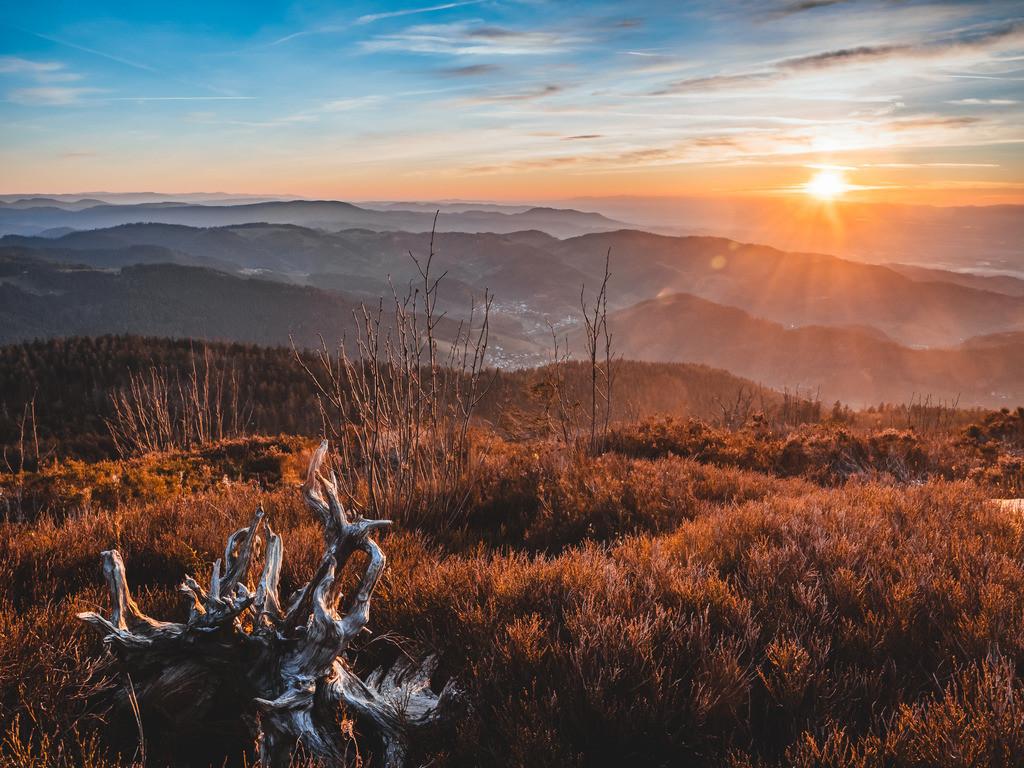 Hornisgrinde im Abendlicht | Herbstlicher Sonnenuntergang an der Hornisgrinde im Nordschwarzwald