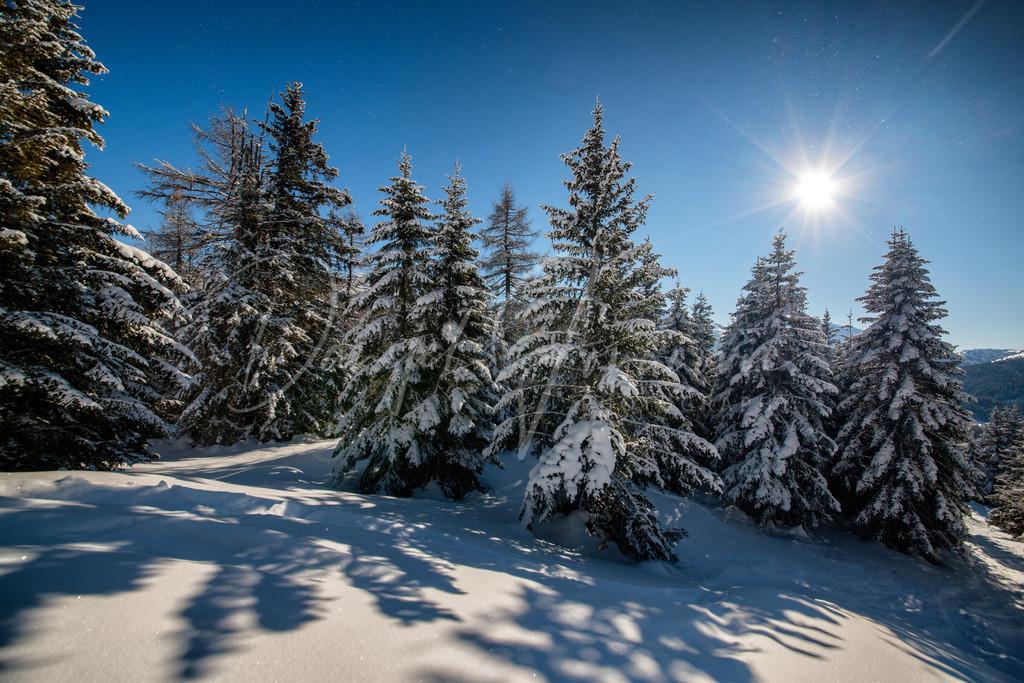 Winter | Tiroler Winter vom feinsten