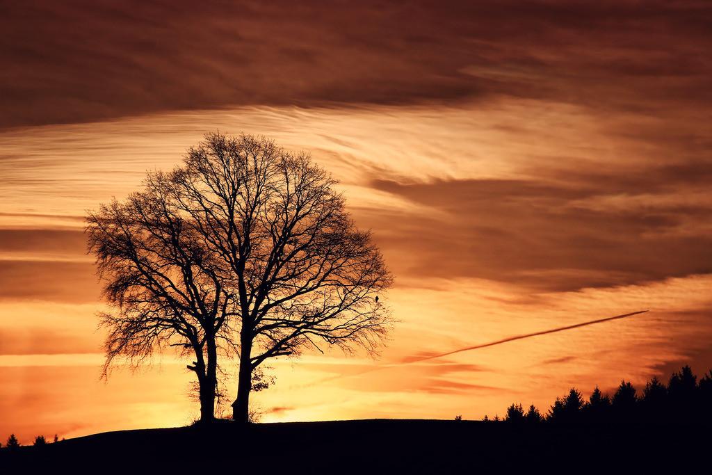 116-Sonnenaufgang-2