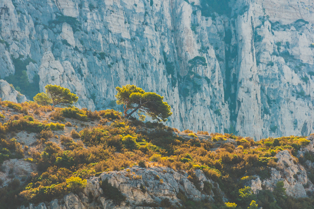 Marseille | Marseille, Frankreich, Südfrankreich, Süden, Mittelmeer, Urlaub, Sommer, Calanques, Nationalpark