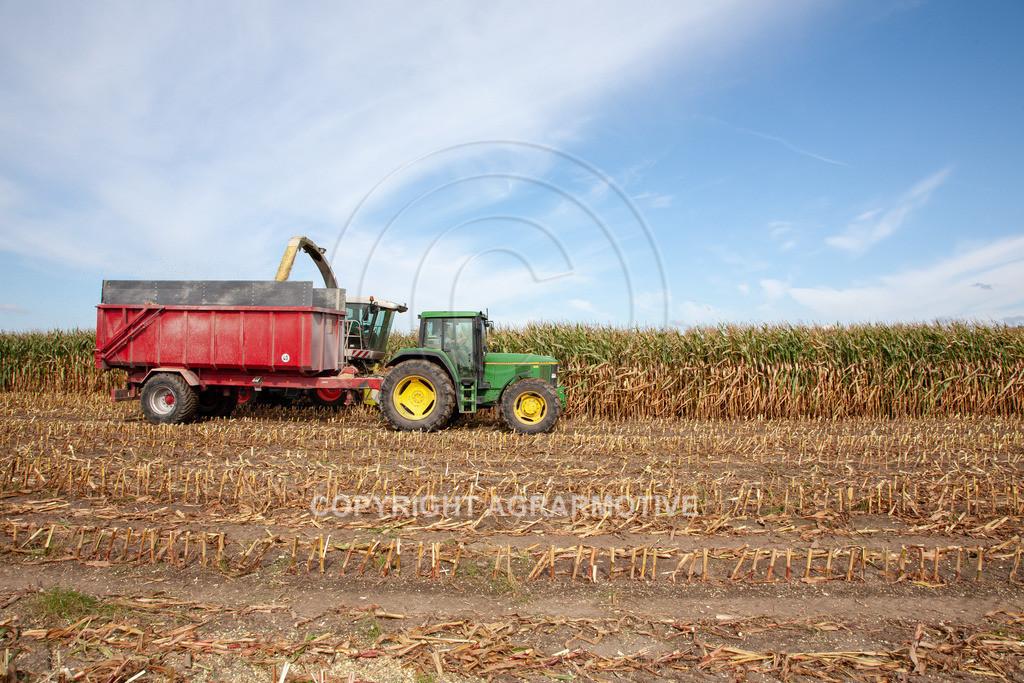 20080914-IMG_8923 | Silomais wird gehäckselt - AGRARFOTO Bilder aus der Landwirtschaft