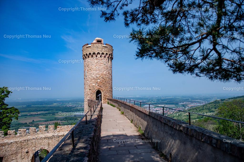 DSC_0094 | Bensheim, Auerbach, Schloss Auerbach, Burg, Mittelalter, Ruine, ,, Bild: Thomas Neu