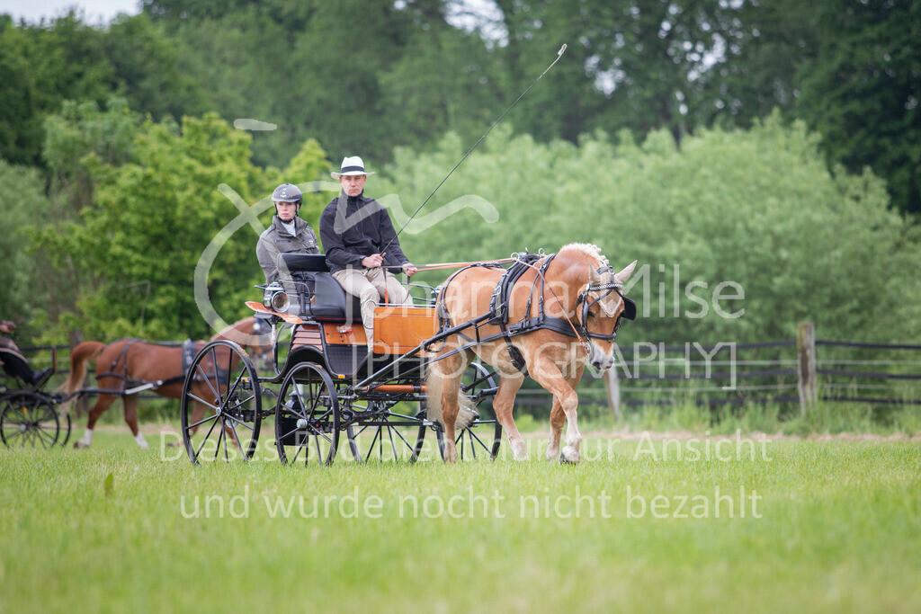 190525_Fahren-012 | Pferdesporttage Herford 2019 Fahren