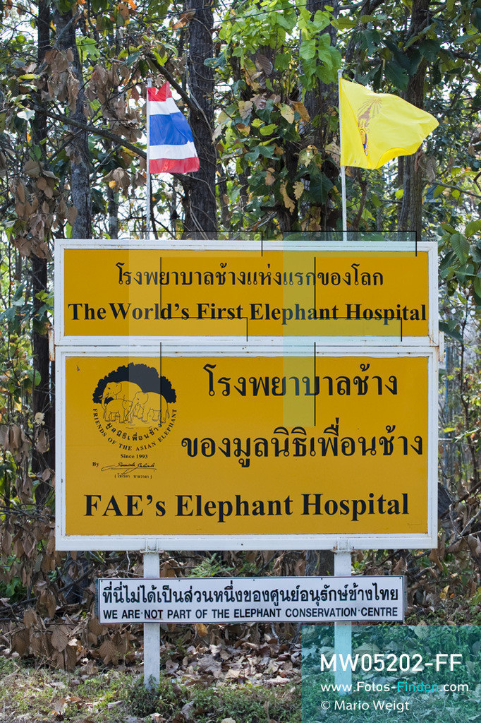 MW05202-FF   Thailand   Lampang   Reportage: Krankenhaus für Elefanten   Schild vom weltweit ersten Elefantenhospital nahe dem Eingang  ** Feindaten bitte anfragen bei Mario Weigt Photography, info@asia-stories.com **