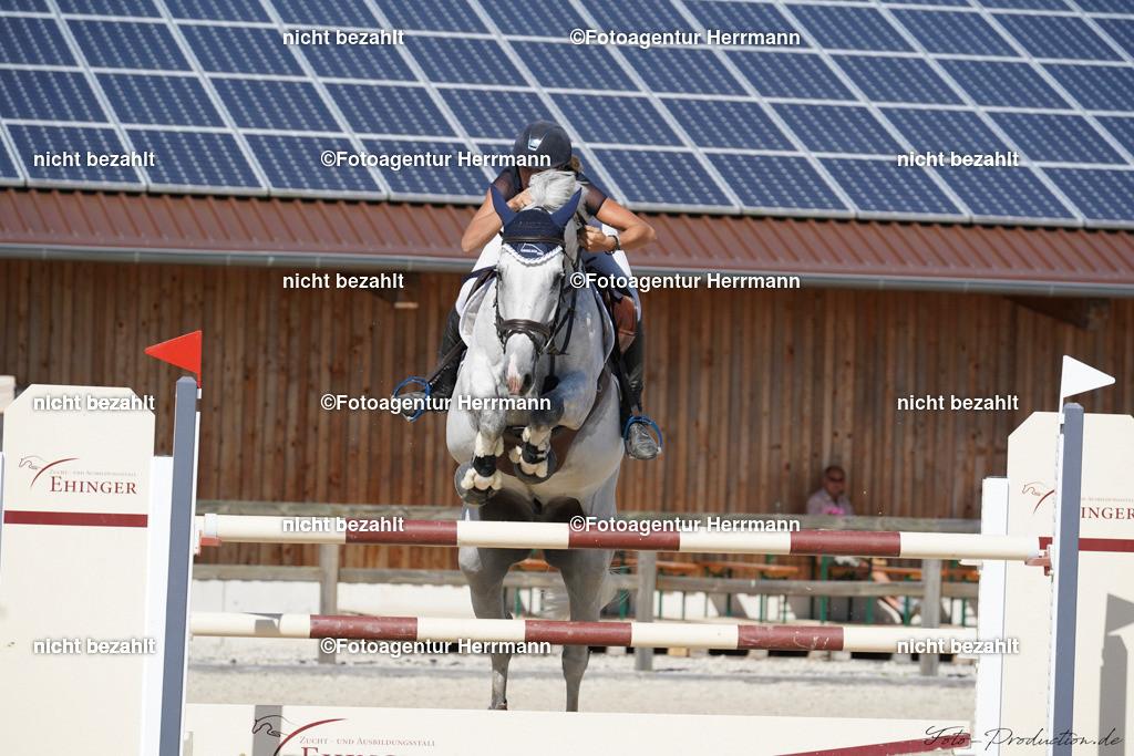 20190915-F_P09708 | Horse Gym´s Landino, Honsolgen, 2019