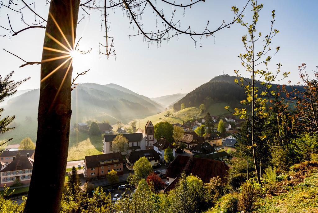 Ausblick auf Mühlenbach | Morgendlicher Ausblick auf das kleine Schwarzwalddorf Mühlenbach