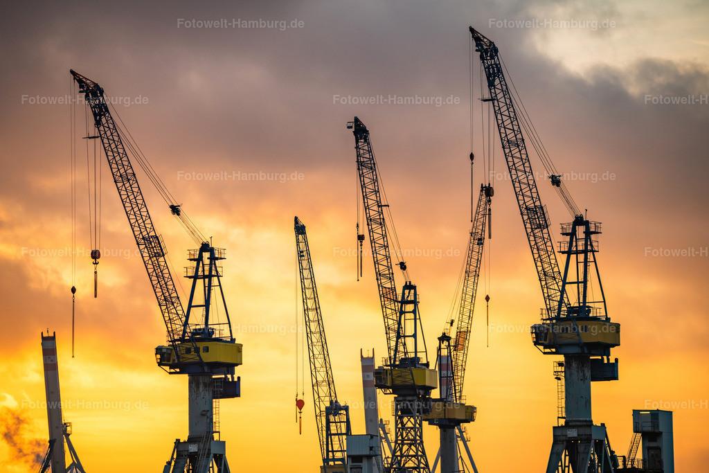 10200716 - Hafenkräne im Sonnenuntergang | Hamburger Hafenkräne im Licht der untergehenden Sonne.