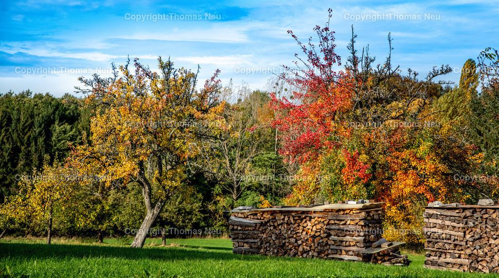 DSC_9418-2   bli,Lautertal, ein Hauch von Idian Summer im Odenwald, Herbst, goldener Oktober   ,, Bild: Thomas Neu