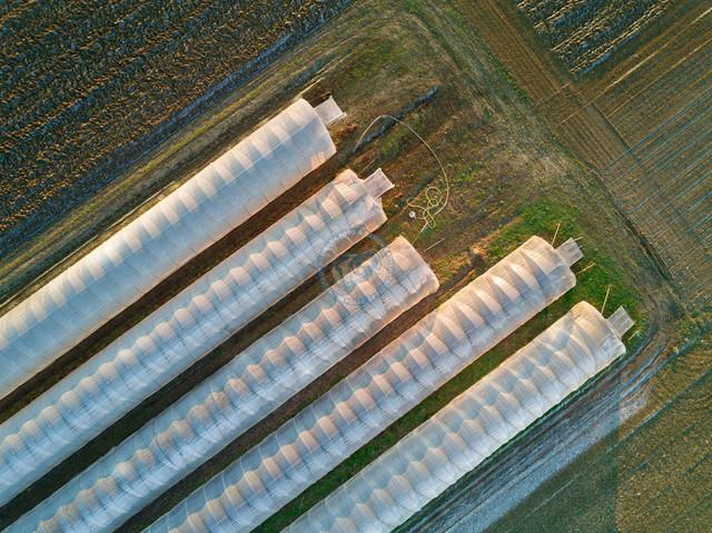 Gewächshaustunnel am Hörzhof | DEU, Deutschland, Filderstadt, 29.12.2016, Folientunnel über einem Anbaufeld des Hörzhof Filderstadt, © 2016 Christoph Hermann, Bild-Kunst Urheber 707707, Gartenstrasse 25, 70794 Filderstadt, 0711/6365685;   www.hermann-foto-design.de ; Contact: E-Mail ch(at)hermann-foto-design.de, fon: +49 711 636 56 85
