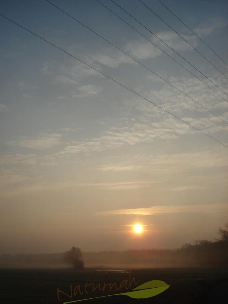 Sonnenaufgang Winterzart
