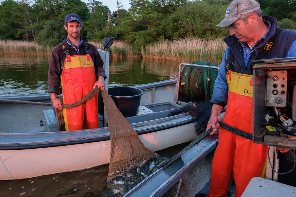 Wadenfischen auf der Schlei © Holger Rüdel | In der Mitte eines Wadennetzes befindet sich der Fangsack mit der Beute. Hier ziehen die Schleswiger Fischer Jörn und Nils Ross (links) den gut gefüllten Fangsack an Bord.