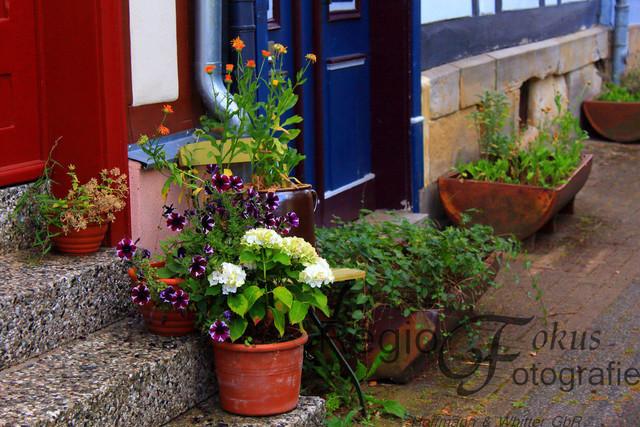 Herzlich Willkommen | Liebevoll gestalteter Eingangsbereich in der Altstadt von Bad Salzdetfurth
