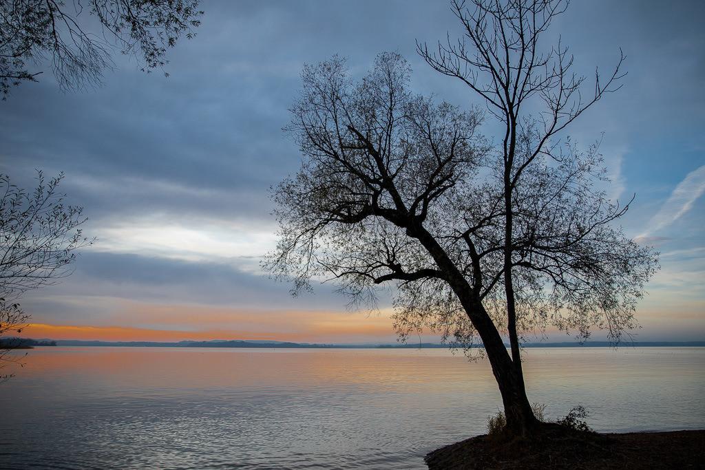 Baumsilhouette am Bayerischen Meer | Abendstimmung am Chiemsee, Oberbayern