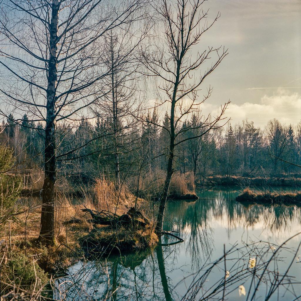 Silence in Autumn | Wünschen Sie ein größeres Format, kontaktieren Sie mich bitte.