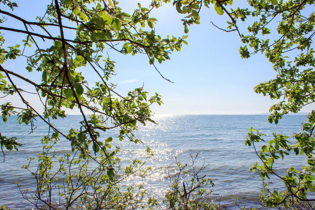 Frühling an der Ostsee   Frühling am Strand in Kleinwaabs