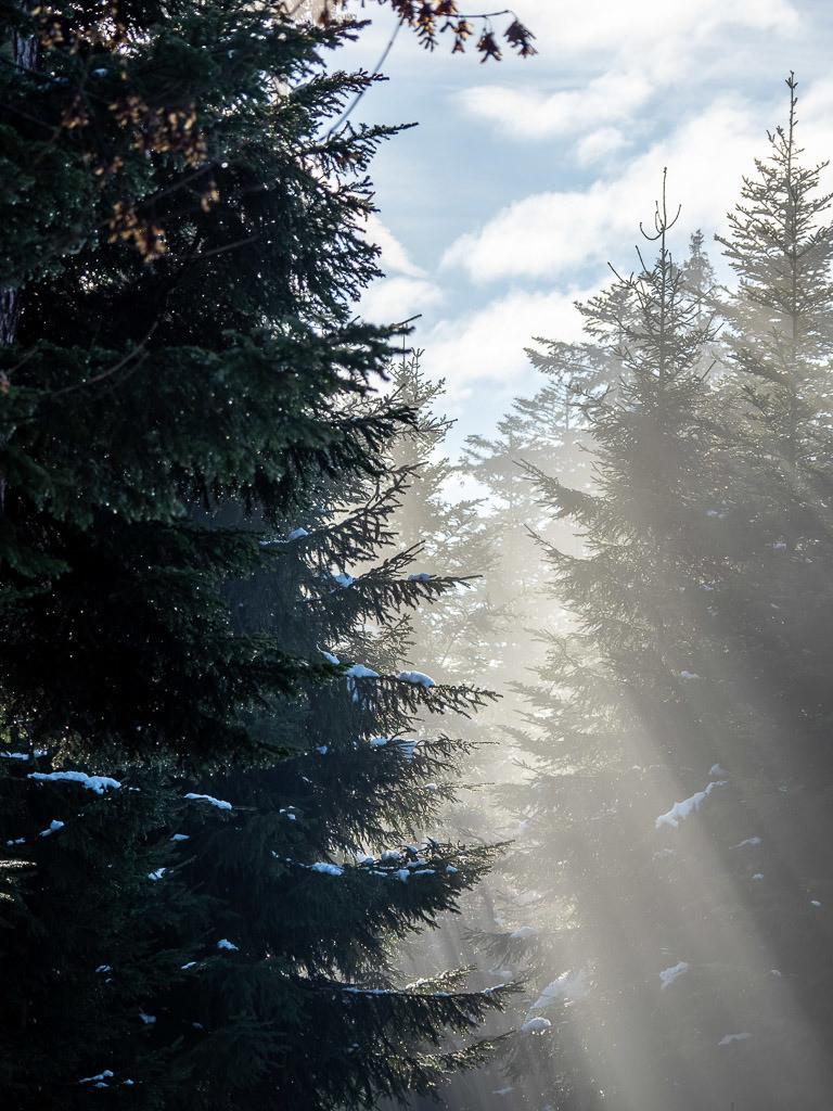 Ray of light (I)
