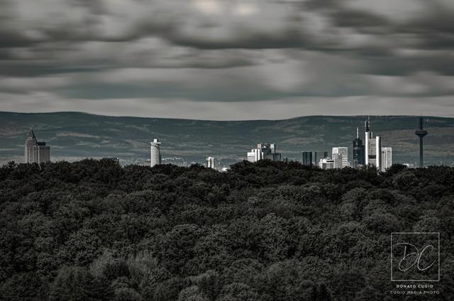 Frankfurt / Wald | Aufgenommen: Aussichtsturm Dietzenbach