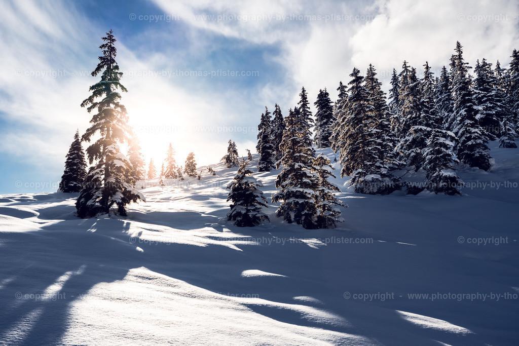 Pillberg im Winter-1