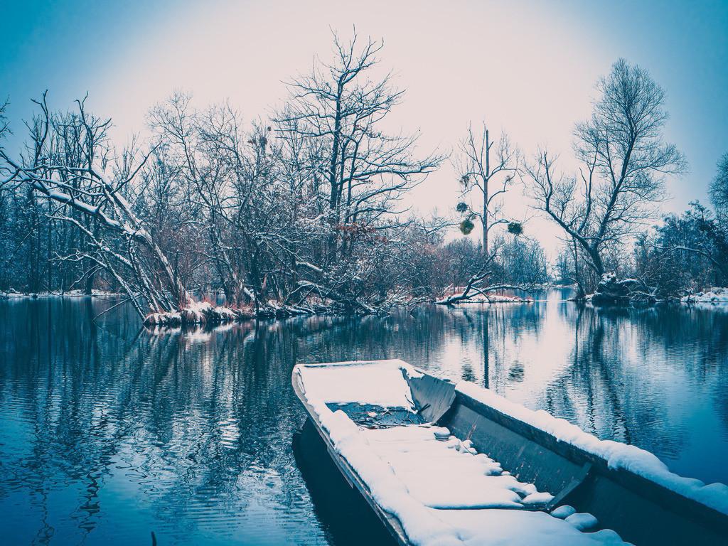 Winter in den Rheinauen | Die Elz bei Schwanau im weißen Winterkleid