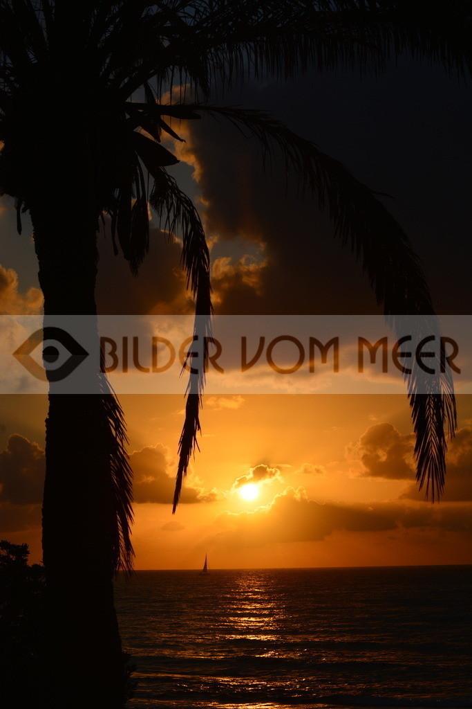 Bilder Sonne und Meer | Bilder Sonne und Meer bei Sonnenaufgang