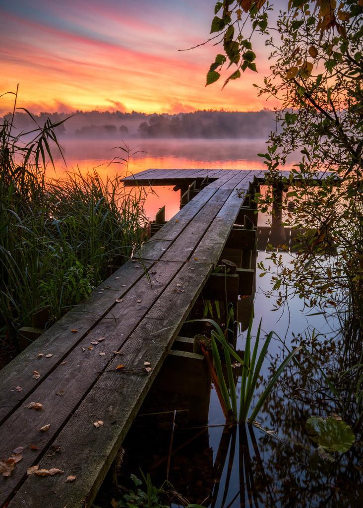 Jetty Gold I | Nebliger Sonnenaufgang am Bossee.