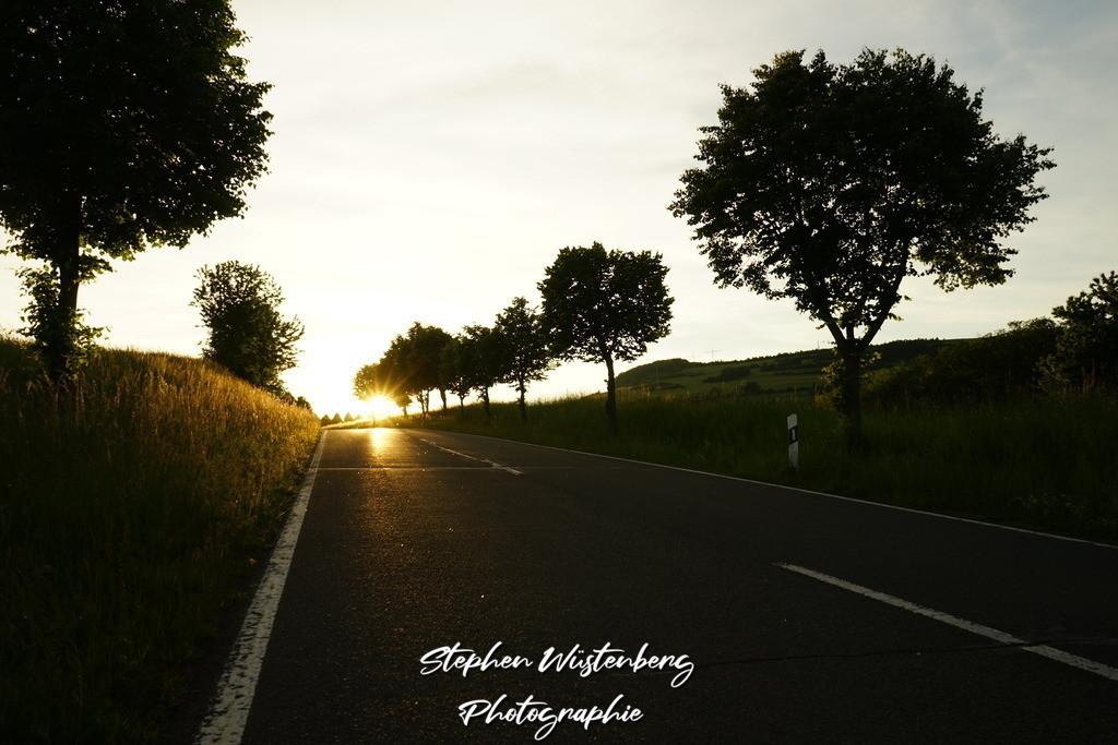 Sunset Rockenhausen | Sonnenuntergang in Perspektive der Zufahrtsstrasse zum Inkelthalerhof bei Rockenhausen