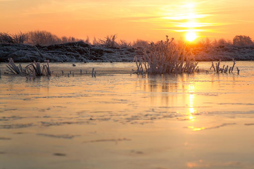 Sonnenaufgang in den Hammewiesen | Sonnenaufgang im Winter.