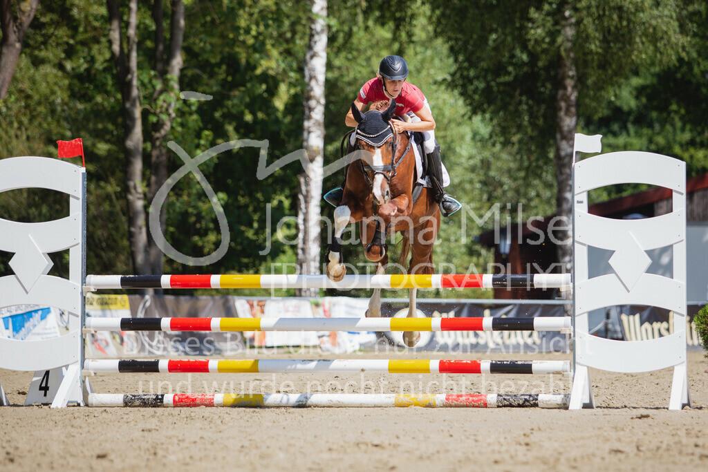 200819_Delbrück_Sprpf-A_2_1-248 | Delbrück Masters 2020 Springpferdeprüfung Kl. A** 4-6jährige Pferde