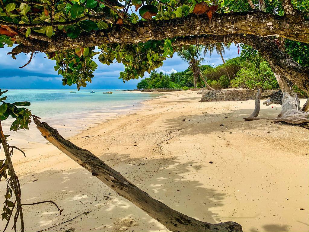 Paradies pur auf den Seychellen  | Kristallklares Wasser im indischen Ozean
