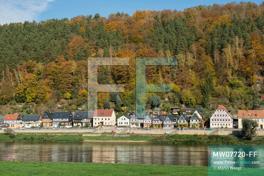 MW07720-FF   Deutschland   Sachsen   Sächsische Schweiz   Blick auf Postelwitz (Ortsteil von Bad Schandau) mit Fachwerkhäusern am Elbufer im Herbst   ** Feindaten bitte anfragen bei Mario Weigt Photography, info@asia-stories.com **