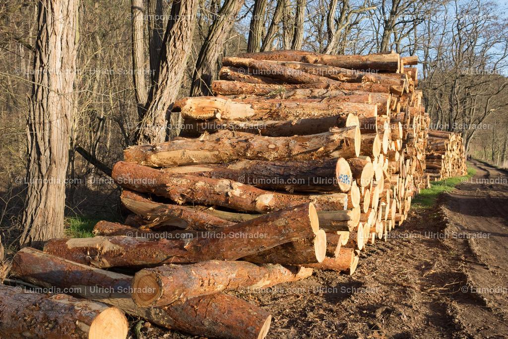10049-10122 - Holzstapel   max. Bildgröße A3   300dpi