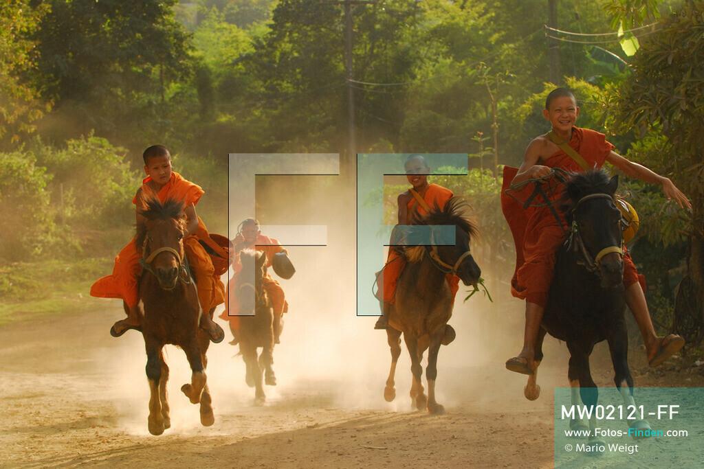 MW02121-FF | Thailand | Goldenes Dreieck | Reportage: Buddhas Ranch im Dschungel | Die jungen Mönche kommen vom Almosen sammeln zurück ins Kloster. Zuerst reitet Novize Aa-Kuab auf seinem Pferd Janjao.  ** Feindaten bitte anfragen bei Mario Weigt Photography, info@asia-stories.com **