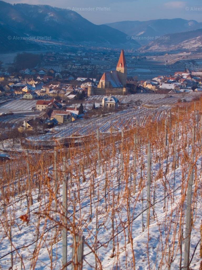 wachau_winter_weingarten_(c)apfeffel_ (51)   Gartenhotel & Weingut Pfeffel Dürnstein