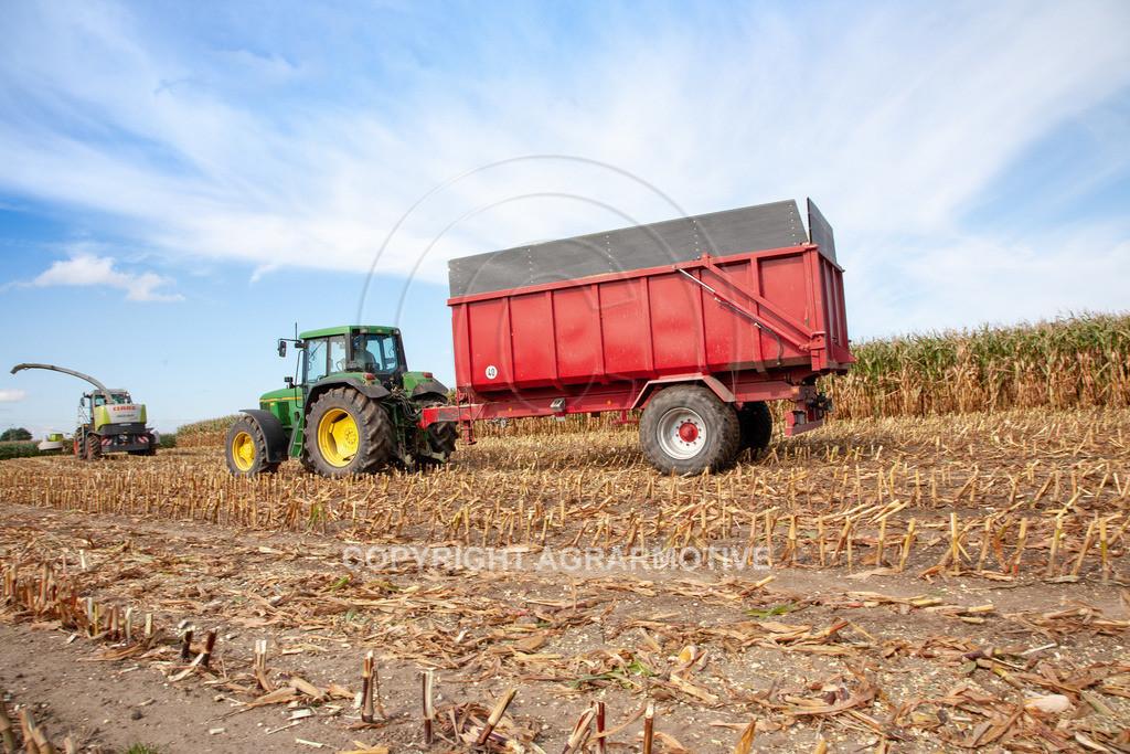 20080914-IMG_8931 | Silomais wird gehäckselt - AGRARFOTO Bilder aus der Landwirtschaft