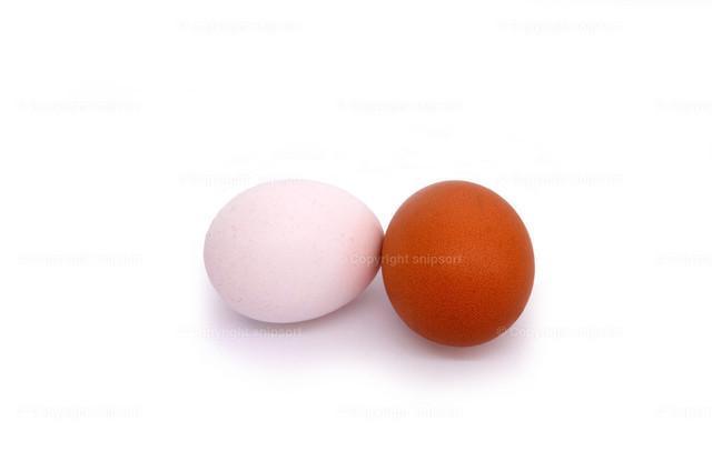 Zwei Eier | Zwei Hühnereier über weißem Hintergrund