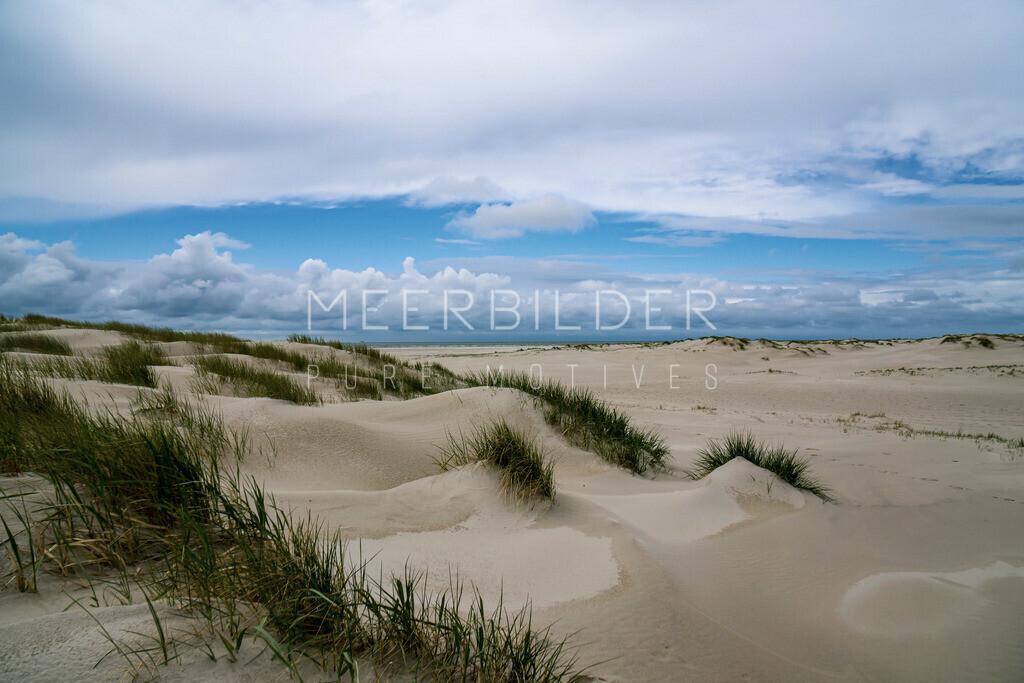 Meer Bilder Nordsee III | Nordsee Dünen als Wandbild auf Alu Dibond, Leinwand oder Acrylglas.