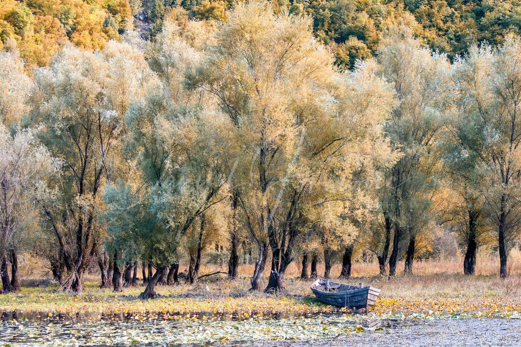 Fischerboot | Fischerboot am herbstlichen Skadar See