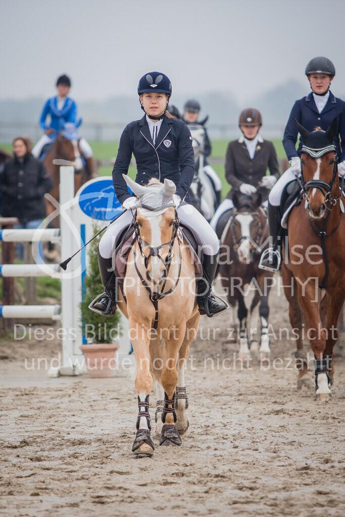190406_Frühlingsfest_StilE-079 | Frühlingsfest der Pferde 2019, von Lützow Herford, Stil-WB mit erlaubter Zeit