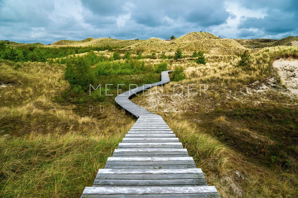 Nordsee Bilder Amrum Dünen   Holzsteg durch die Dünen: Der Weg ist das Ziel! Bleib mit jedem Schritt im Moment.