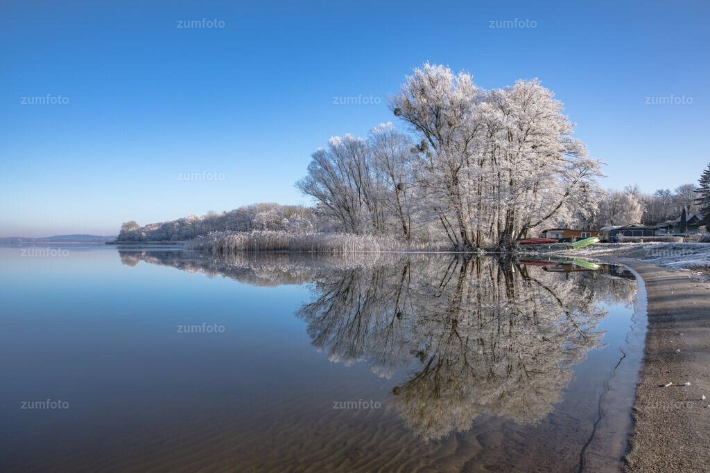 0-180108_1235-6353   Ich liebe den Winter mit seinen Farben und Strukturen!! :-)Spiegelung von raureifbedeckten Bäumen im See.
