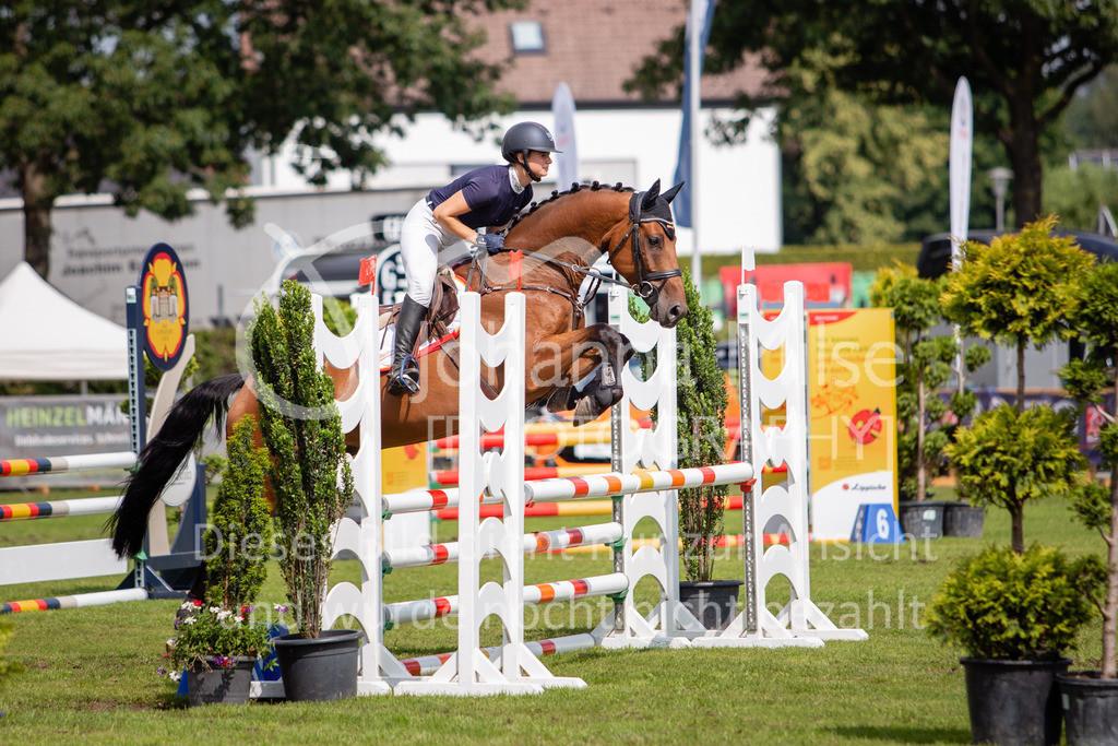 190719_LC_SprPf-A-043 | Lopshorn Classics 2019 Springpferdeprüfung Kl. A** 4-5 jährige Pferde