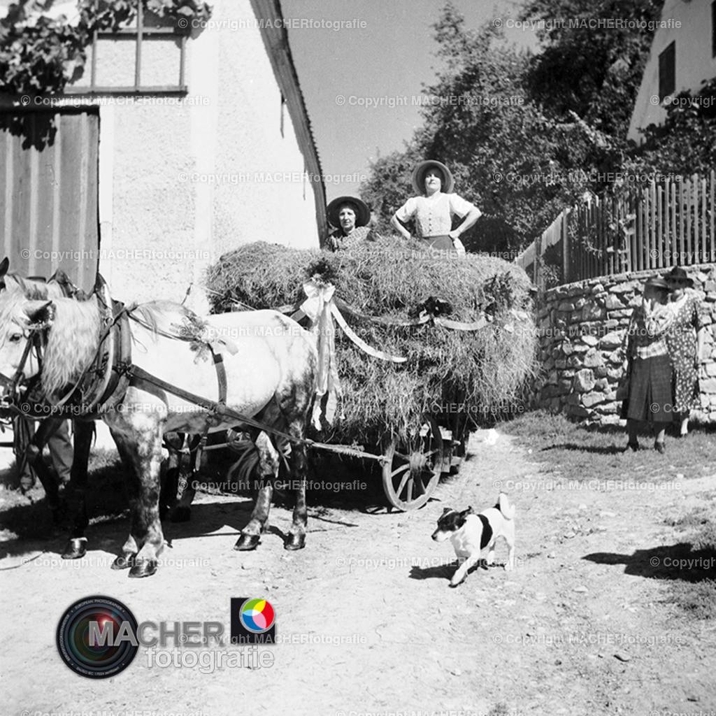 1949_Erntedankfest_05