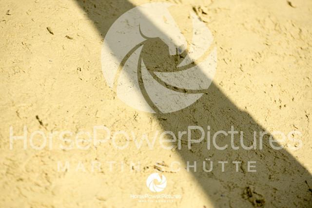 RFV Ochtrup - Fohlenparade-0966