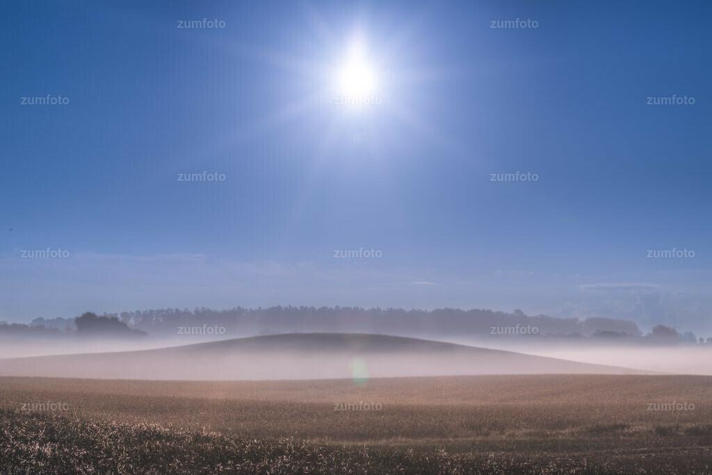 0-120815_0650-8321-28 | --Dateigröße 5760 x 3840 Pixel-- Feld im Nebel.