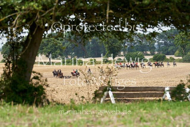 Jagd Knoop 217231_Marina Hewig