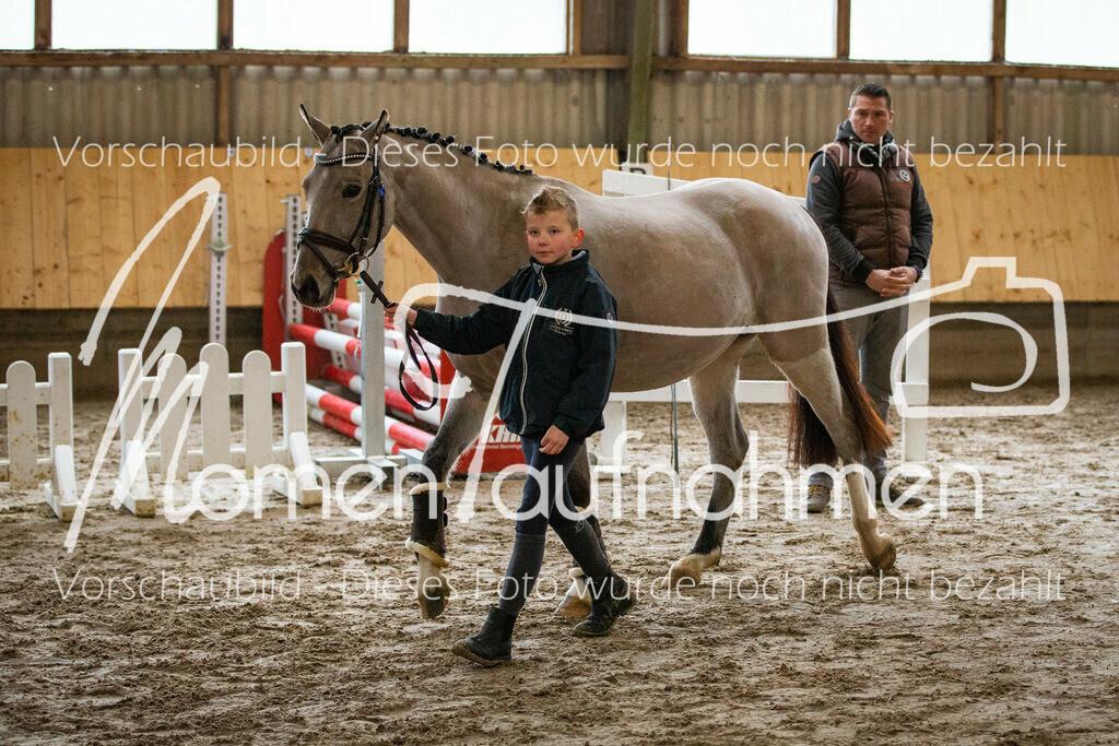 Freispringen-Pony-3j-14