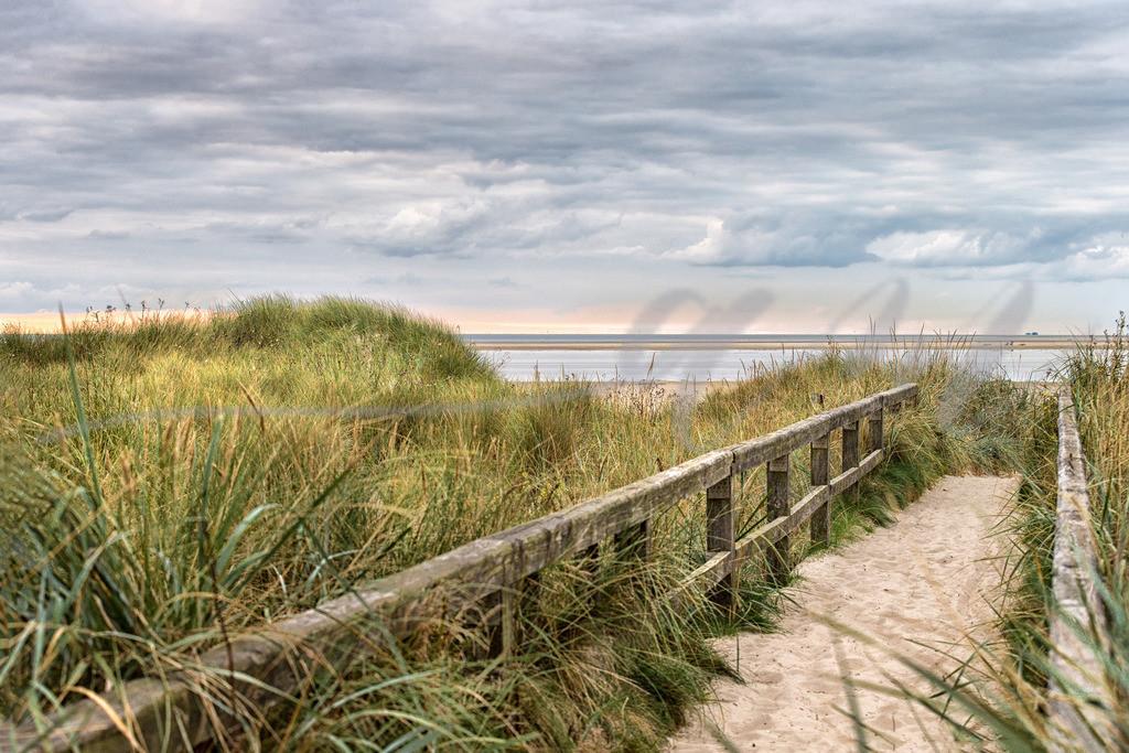 Dünenweg mit Blick auf den Strand | Sankt Peter-Ording Weg zur Hundeauslauffläche
