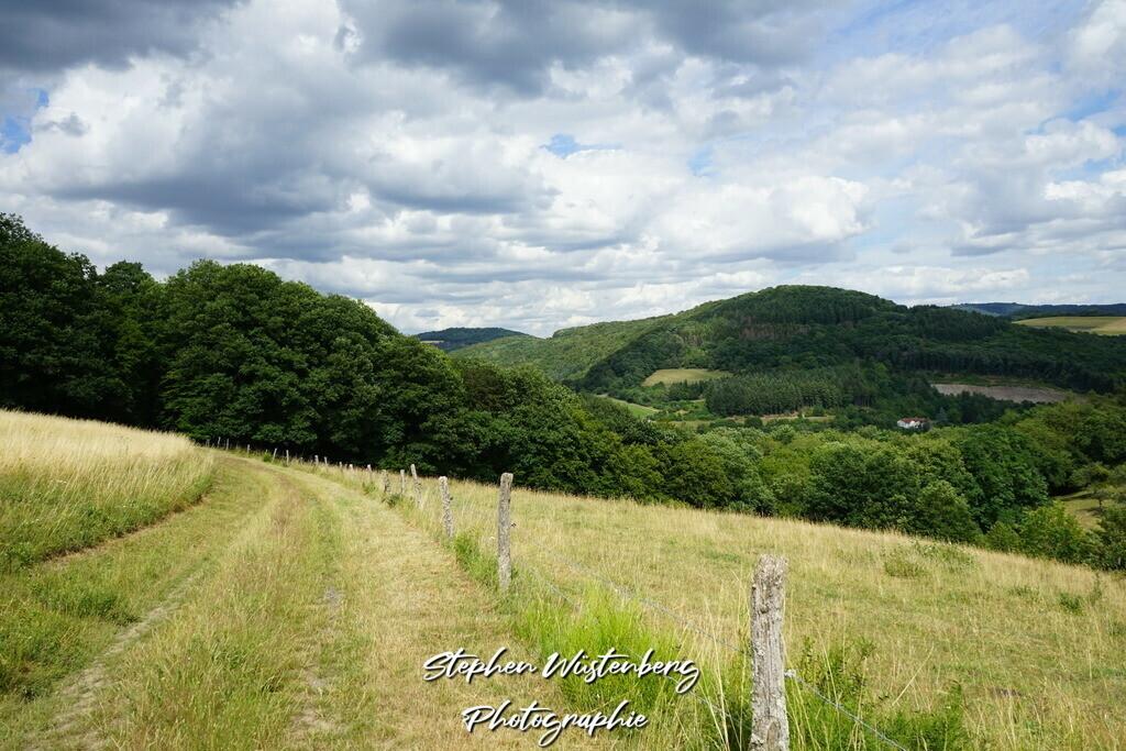 Aussicht bei Imsweiler  | Aussicht bei Imsweiler