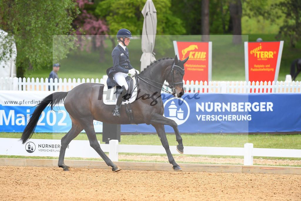 Langehanenberg_Straight Horse Ascenzione_10214095